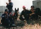 災害救助犬トレーニング(13)